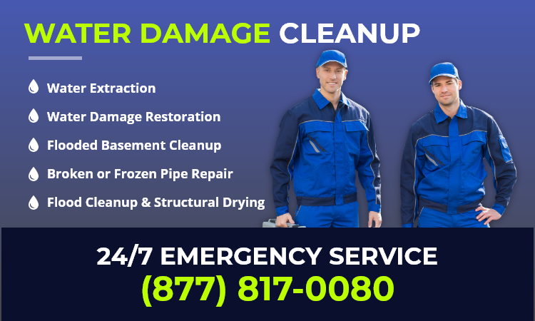 pb-city water damage service